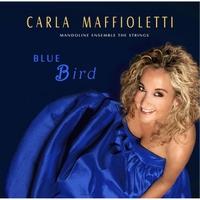 Carla Maffioletti: Blue Bird