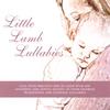 Little Lamb Music: Little Lamb Lullabies