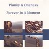 Plunky & Oneness: Forever In A Moment