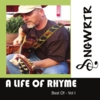 Sngwrtr: A Life of Rhyme - Best of, Vol. I