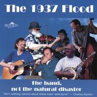 Cubierta del álbum de The Band, Not the Natural Disaster