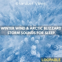 Stardust Vibes, Nature Soundzzz Club & White Noize Dream