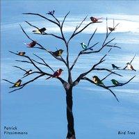 Patrick Fitzsimmons | Bird Tree