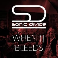 Sonic Divide: When It Bleeds