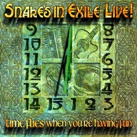 Snakes in Exile | Time Flies When You're Having Fun (Live)
