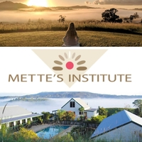 Mette's Institute | The 7 Principles Experience