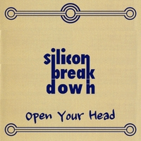 Silicon Breakdown | Open Your Head