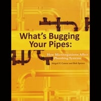 Abigail F. Cantor | What's Bugging Your Pipes: How Microorganisms Affect Plumbing Systems