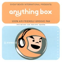 Anything Box | 100% Air Friendly Groove Pak