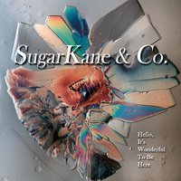 Sugarkane & Co. | Hello, It's Wonderful to Be Here