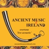 Ancient Music Ireland: Overtone  Live Acoustic
