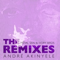 Andre Akinyele | The Metal Skin and Ivory Birds Remixes