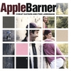 Apple Barner: Cheap Guitars and Pink Lemonade