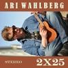 Ari Wahlberg: 2 X 25