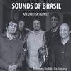 Ark Ovrutski: Sounds of Brasil