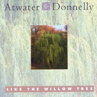 Atwater-Donnelly | Like the Willow Tree