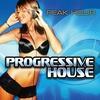 "Various Artists: Progressive House ""Peak Hour"" (non-stop Dj Mix )"