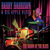 Barry Harrison & Big Apple Blues | The Baron of the Blues
