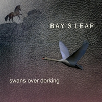 Bay's Leap | Swans over Dorking