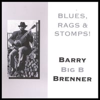 Barry Big B Brenner | BLUES, RAGS & STOMPS!