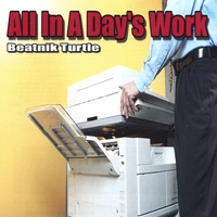 Beatnik Turtle | All in a Day's Work