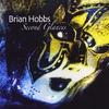 Brian Hobbs: Second Glances
