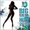Various Artists: Big Salsa Hits 2013