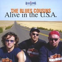 The Blues Cousins | Alive In America