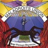 Bogs Visionary Orchestra: Maladroits Union