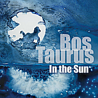 Bos Taurus | In the Sun