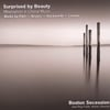 Boston Secession: Surprised by Beauty: Minimalism in Choral Music