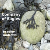 Bradley Andrews | Company of Eagles