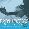 Brian Vaccaro Trio: Going Through the Motions