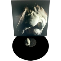 Brother Dege | How to Kill a Horse (Black Vinyl / Signed)