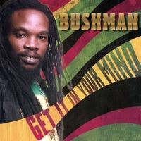 BUSHMAN: Get It In Your Mind