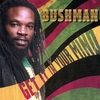 BUSHMAN: Get It In Your Mind