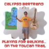 Calypso Bertrand: Playing For Belkins...                                              On the Toucan Trail