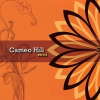 Cameo Hill | Vices