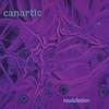 Canartic: Modulotion
