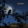 Carey Parder: Nightbird