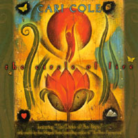 Cari Cole | Circle of Fire, music inspired by The Four Agreements, by don Miguel Ruiz