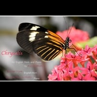 Carolyn Hove & Joanne Pearce Martin | Chrysalis for English Horn & Piano