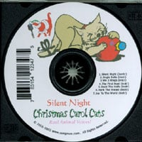 Christmas Carol Cats | Silent Night Christmas Music For Cat Lovers