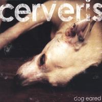 Dog Eared lyrics
