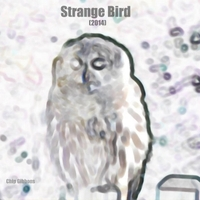 Chip Gibbons | Strange Bird (2014)