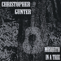 Christopher Gunter | Mosquito in a Tree