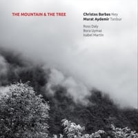 Christos Barbas & Murat Aydemir | The Mountain and the Tree