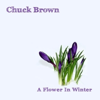 Chuck Brown | A Flower in Winter