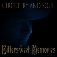 Circuitry and Soul | Bittersweet Memories