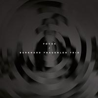 Burkhard Frauenlob Trio | Focus